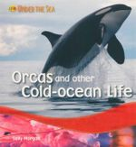 Orcas and Other Cold Ocean Life : Under the Sea - Sally Morgan