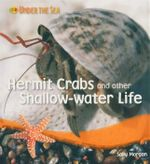 Hermit Crabs and Other Shallow Water Life : Under the Sea - Sally Morgan