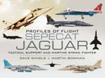 Sepecat Jaguar : Profiles of Flight : Tactical Support and Maritime Strike Fighter - Dave Windle