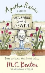 Agatha Raisin and the Wellspring of Death : Agatha Raisin & the Wellspring of Death - M. C. Beaton