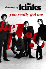 You Really Got Me : The Story of The Kinks - Nick Hasted
