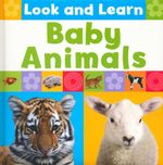 Baby Animals : Look & Learn