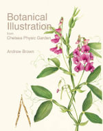 Botanical Illustration from Chelsea Physic Garden - Andrew Brown