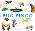 Bug Bingo : Magma for Laurence King - Christine Berrie