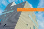 The New Art Gallery, Walsall : Art Spaces - Scala Publishing