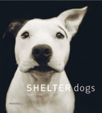 Shelter Dogs - Traer Scott