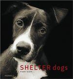 Shelter Dogs - Traer Scott