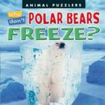 Why Don't Polar Bears Freeze? - Katherine Smith