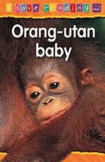 Orang-Utan Baby : I Love Reading Series - Purple Reading Level : Age 6 - 7 Years - Monica Hughes