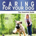 Caring for Your Dog : The Essential Guide - Jennifer Thomson
