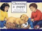 Choosing a Puppy PM Yellow Set 2 Level 7 : PM Library Yellow - Jenny Giles