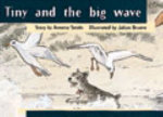 Tiny and the Big Wave PM Yellow Set 3 Fiction Level 8 : PM Library Yellow - Annette Smith