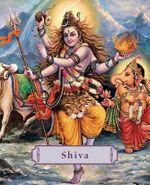 Shiva : Lord of the Dance - James H. Bae