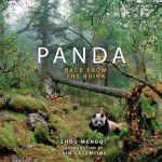 Panda : Back from the Brink (fixed layout) - Zhou Mengqi