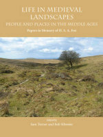 Life in Medieval Landscapes : People and Places in the Middle Ages - Sam Turner