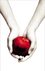 Twilight : Twilight Saga Book 1 : A Special, Limited Edition - All in White - Stephenie Meyer
