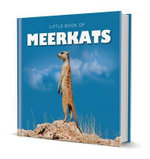 Little Book of Meerkats - Michelle Brachet