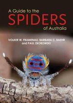 A Guide to Spiders of Australia - Paul Zborowski