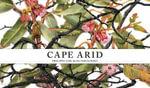 Cape Arid - Philippa Nikulinsky