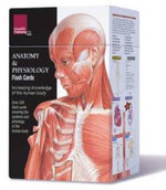 Anatomy and Physiology Flash Cards - Scientific Publishing