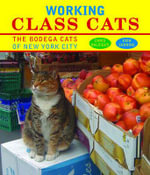 Working Class Cats : The Bodega Cats of New York City - Chris Balsiger