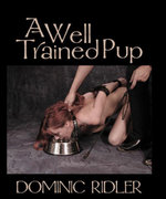 A Well Trained Pup : Pink Flamingo Publications - Dominic Ridler