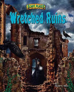 Wretched Ruins - Steven L. Stern