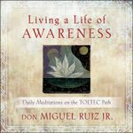 Living A Life of Awareness : Daily Meditations on the Toltec Path - Don Miguel Ruiz