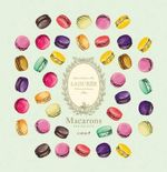 Laduree Macarons - Vincent Lemains