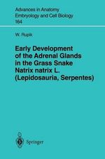Early Development of the Adrenal Glads in Grass Snake Natrix natrix L. (Lepidosauria, Serpentes) - W. Rupik