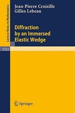 Diffraction by an Immersed Elastic Wedge :  Proceedings of the IUTAM/IFToMM Symposium Held in... - Jean-Pierre Croisille