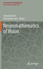 Neuromathematics of Vision : Principles and Practices for Designing Digital App...
