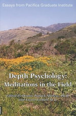 Depth Psychology : Meditations in the Field - Dennis Patrick Slattery