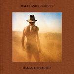 Balls and Bulldust - Hakan Ludwigson