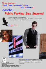 Neale Sourna's North Coast Academies' Diary, Volume 3, #1.1--Sascha : Public Parking, Sex Squared - Neale Sourna
