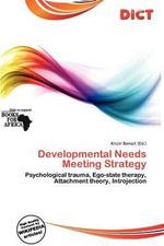 Developmental Needs Meeting Strategy