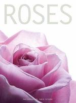 Roses - White Star