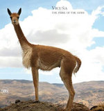 Vicuna : The Fibre of the Gods - Loro Piana