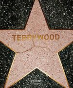 Terrywood - Terry Richardson