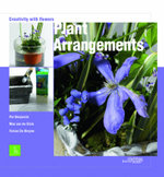 Plant Arrangements : Creativity with Flowers - Tomas De Bruyne
