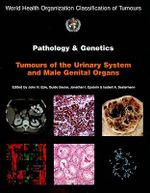 Pathology and Genetics of Tumours of the Urinary System and Male Genital Organs : IARC WHO Classification of Tumours