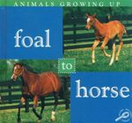 Foal To Horse : Animals Growing Up - Jason Cooper