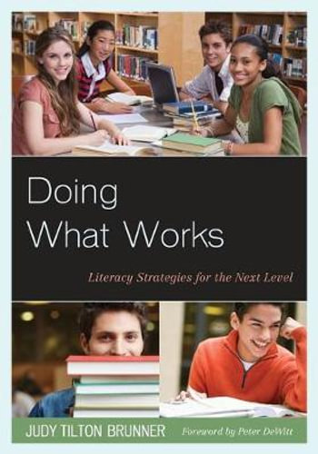 NEW Doing What Works By Judy Tilton Brunner Paperback Free Shipping