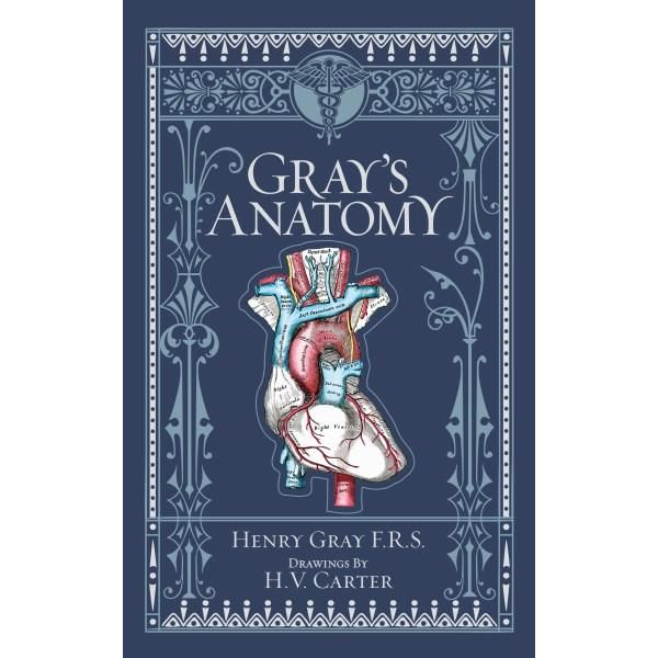 Does anyone know anything about Henry Gray the Anatomist? also known for Gray's anatomy.?
