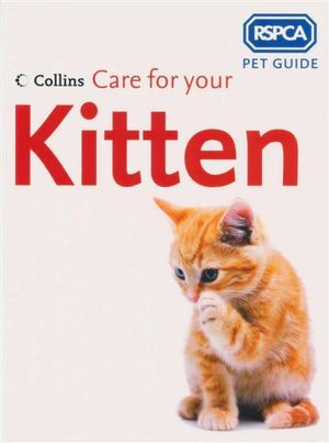 Care for Your Kitten : RSPCA Pet Guide - RSPCA