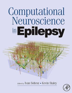 Computational Neuroscience in Epilepsy - Ivan Soltesz