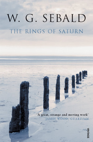 Rings of Saturn : Vintage Classics - W G Sebald