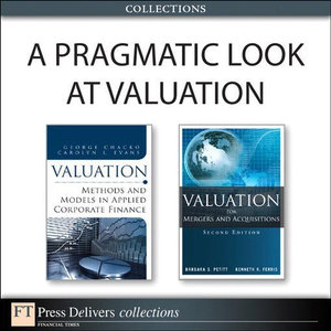 A Pragmatic Look at Valuation (Collection) - Barbara S. Petitt