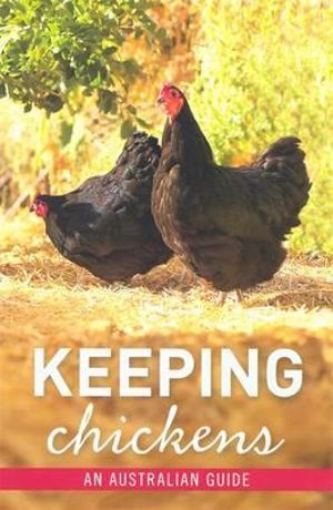 Keeping Chickens - Brasch Nicolas