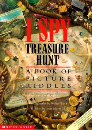 i spy book for adults